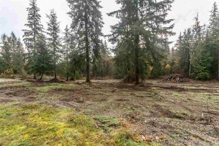 """Photo 8: 29684 DEWDNEY TRUNK Road in Mission: Stave Falls House for sale in """"Stave Lake"""" : MLS®# R2122636"""