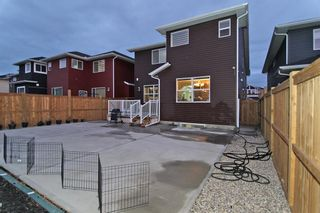 Photo 32: 92 Red Embers Terrace NE in Calgary: Redstone Detached for sale : MLS®# A1047600