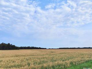 Photo 6: RM 486 5 Quarter Land in Moose Range: Farm for sale (Moose Range Rm No. 486)  : MLS®# SK867716