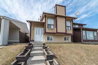 Photo 1: 4333 58 Street NE in Calgary: Temple Detached for sale : MLS®# A1092710