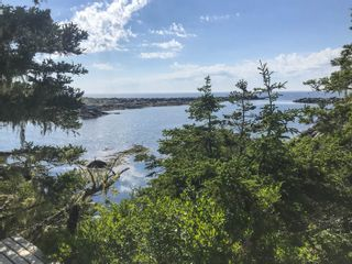 Photo 22: Lot 5 & 1064 Long Cove Road in Port Medway: 406-Queens County Residential for sale (South Shore)  : MLS®# 202101023