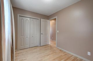 Photo 33: 158 Covemeadow Road NE in Calgary: Coventry Hills Detached for sale : MLS®# A1141855