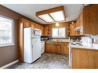 Photo 5: 21167 wicklund Avenue in Maple Ridge: Northwest Maple Ridge House for sale : MLS®# R2046258
