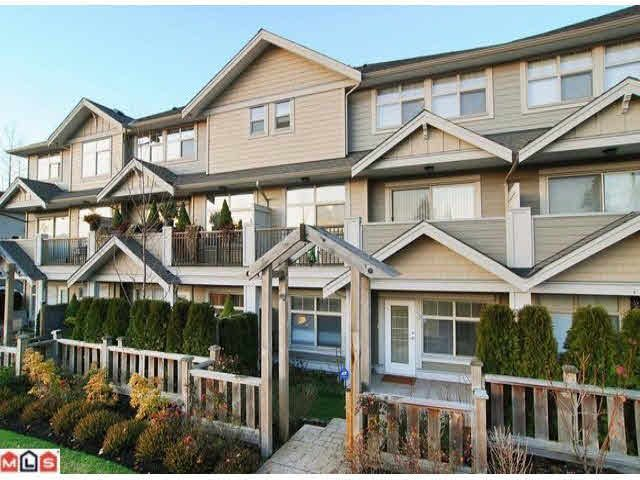 Main Photo: 3 22225 50TH AVENUE in : Murrayville Townhouse for sale : MLS®# F1221570
