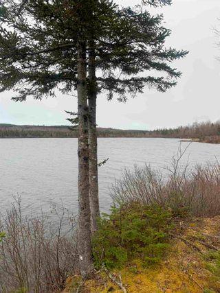 Photo 2: Bengal-Oceanview Road in Albert Bridge: 211-Albert Bridge / Mira Vacant Land for sale (Cape Breton)  : MLS®# 202104885