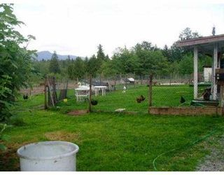 Photo 5: 12498 232ND ST in Maple Ridge: East Central House for sale : MLS®# V537676