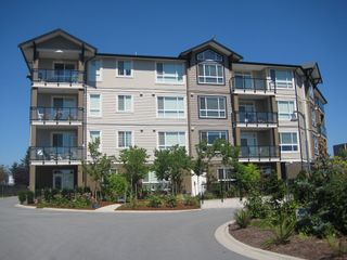 Photo 7: 318 32729 Garibaldi Drive in Abbotsford: Abbotsford West Condo for sale : MLS®# F1127809