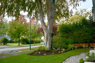 """Photo 2: 1153 W 33RD Avenue in Vancouver: Shaughnessy Townhouse for sale in """"1157 W33rd AVE"""" (Vancouver West)  : MLS®# R2624332"""