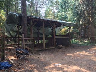 Photo 49: 2949 Rosalie Rd in : Na Cedar House for sale (Nanaimo)  : MLS®# 854892