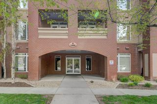 Photo 1: 1101 24 Hemlock Crescent SW in Calgary: Spruce Cliff Apartment for sale : MLS®# A1154369