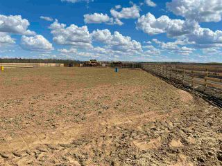 Photo 31: Twp 604 Rg Rd 244: Rural Westlock County Rural Land/Vacant Lot for sale : MLS®# E4223747