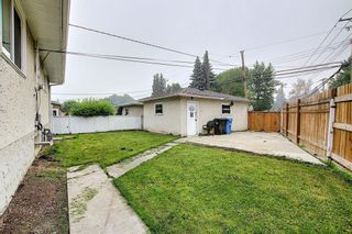 Photo 41: 1936 Matheson Drive NE in Calgary: Mayland Heights Detached for sale : MLS®# A1130969