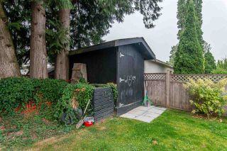 Photo 31: 45498 WELLINGTON Avenue in Chilliwack: Chilliwack W Young-Well House for sale : MLS®# R2502815