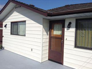 Photo 17: Killarney Area Home for Sale