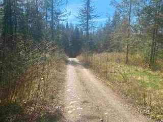 Photo 10: 1815 HARMAN Road: Roberts Creek Land for sale (Sunshine Coast)  : MLS®# R2614266