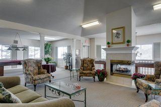 Photo 24: 18 Del Monica Villas NE in Calgary: Monterey Park Row/Townhouse for sale : MLS®# A1135510