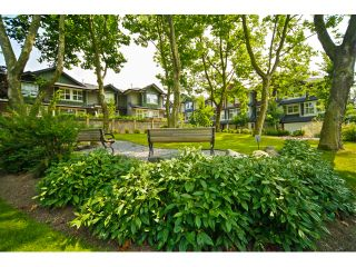"""Photo 31: 16 18199 70TH Avenue in Surrey: Cloverdale BC Townhouse for sale in """"Augusta"""" (Cloverdale)  : MLS®# F1424865"""