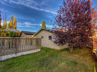 Photo 41: 18388 Chaparral Street SE in Calgary: Chaparral Detached for sale : MLS®# A1113295