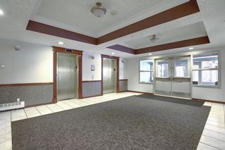 Photo 29: 306 1920 14 Avenue NE in Calgary: Mayland Heights Apartment for sale : MLS®# A1050176