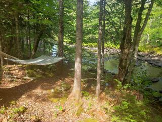 Photo 4: 159 Down River Lane in Maplewood: 405-Lunenburg County Residential for sale (South Shore)  : MLS®# 202125599