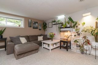 Photo 19: 875 Daffodil Ave in : SW Marigold House for sale (Saanich West)  : MLS®# 877344