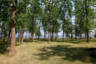 Photo 23: 321 Buffalo Drive in Buffalo Point: R17 Residential for sale : MLS®# 202118014