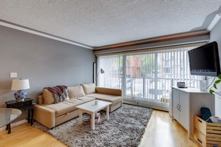 Photo 7: 202 343 4 Avenue NE in Calgary: Crescent Heights Apartment for sale : MLS®# A1118718