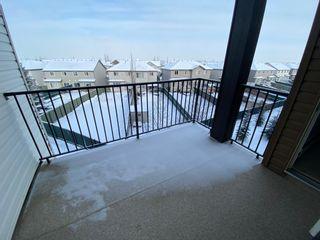 Photo 22: 11812 22 Ave in Edmonton: Condo for rent