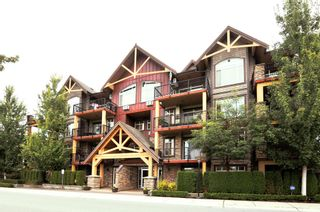Photo 1: 116-207A St in Langley: Willoughby Heights Condo for sale : MLS®# R2313770