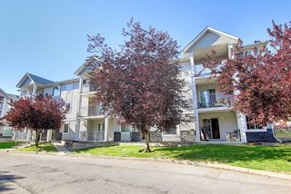 Photo 41: 105 5105 Valleyview Park SE in Calgary: Dover Apartment for sale : MLS®# A1138950