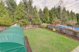 Photo 29: 20145 119A Ave West Maple Ridge Basement Entry Home For Sale
