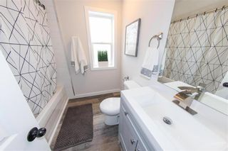 Photo 24: 602 Aberdeen Avenue in Winnipeg: North End Residential for sale (4A)  : MLS®# 202110518