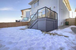 Photo 36: 27 Walden Mount SE in Calgary: Walden Detached for sale : MLS®# A1061206