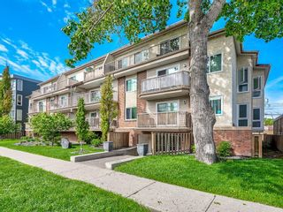 Main Photo: 202 809 4 Street NE in Calgary: Renfrew Apartment for sale : MLS®# A1076760