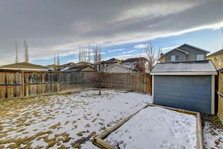 Photo 42: 15 Evansmeade Common NW in Calgary: Evanston Detached for sale : MLS®# A1153510