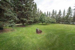 Photo 40: 18951 121 Avenue in Edmonton: Zone 40 House for sale : MLS®# E4239592