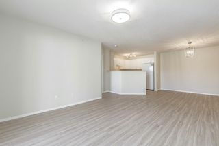 Photo 9: 306 2000 Citadel Meadow Point NW in Calgary: Citadel Apartment for sale : MLS®# A1055011
