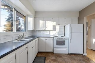 Photo 6: 2339 Maunsell Drive NE in Calgary: Mayland Heights Detached for sale : MLS®# A1059146