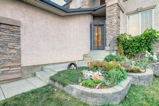 Photo 3: 163 Springbluff Heights SW in Calgary: Springbank Hill Detached for sale : MLS®# A1153228