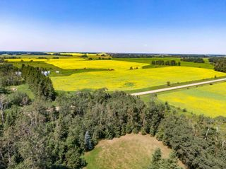 Photo 17: 461017A RR 262: Rural Wetaskiwin County House for sale : MLS®# E4255011