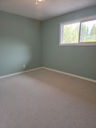 Photo 26: 49461 RGE RD 22: Rural Leduc County House for sale : MLS®# E4247442