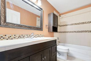 Photo 15: 270 Erin Circle SE in Calgary: Erin Woods Detached for sale : MLS®# C4292742