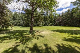 Photo 49: 3110 41 Avenue in Edmonton: Zone 53 House for sale : MLS®# E4252114