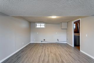 Photo 40: 3812 49 Street NE in Calgary: Whitehorn Detached for sale : MLS®# A1054455