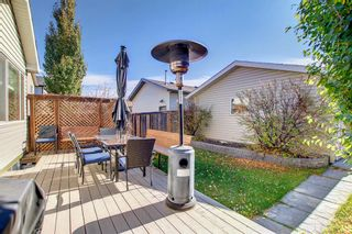 Photo 41: 2500 Sagewood Crescent SW: Airdrie Detached for sale : MLS®# A1152142