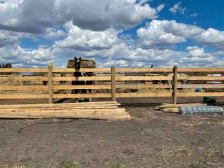 Photo 32: Twp 604 Rg Rd 244: Rural Westlock County Rural Land/Vacant Lot for sale : MLS®# E4223747