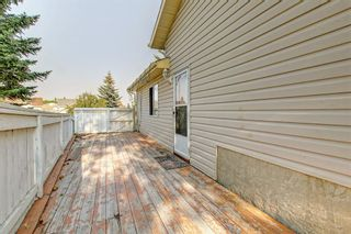 Photo 42: 25 Martinview Crescent NE in Calgary: Martindale Detached for sale : MLS®# A1107227