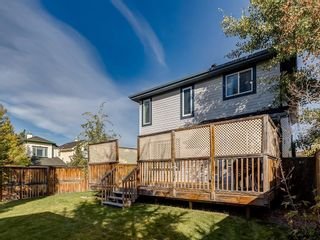 Photo 47: 92 WENTWORTH Circle SW in Calgary: West Springs Detached for sale : MLS®# C4270253