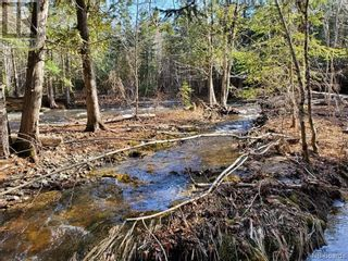 Photo 2: - Route 755 in Tower Hill: Vacant Land for sale : MLS®# NB055567