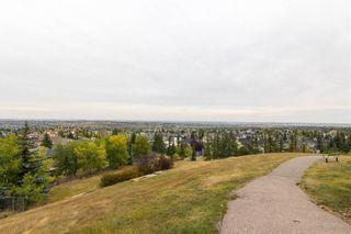 Photo 33: 201 MACEWAN PARK View NW in Calgary: MacEwan Glen Detached for sale : MLS®# C4232497